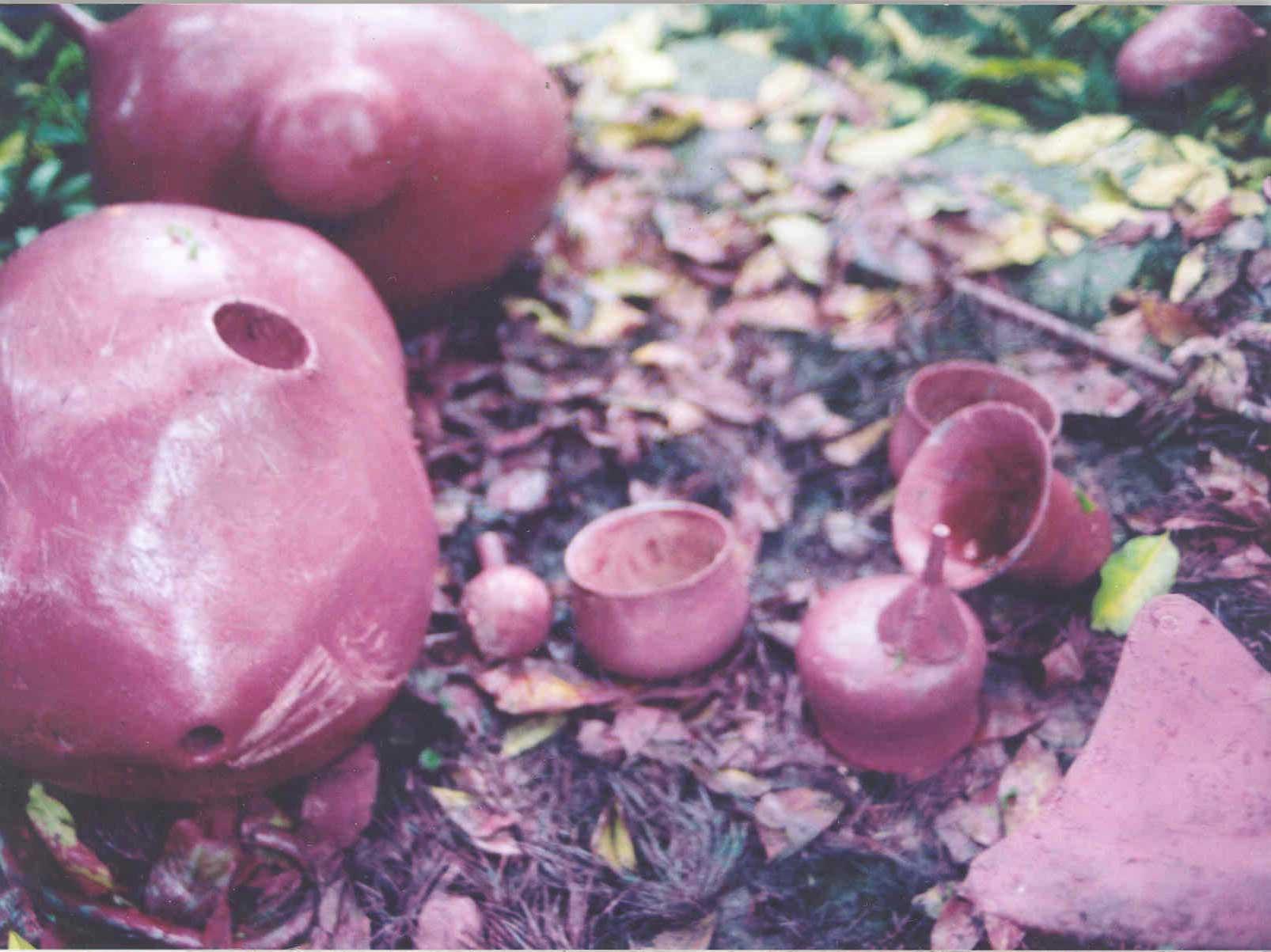 Floresta Sopão – Mondrongos Jambo