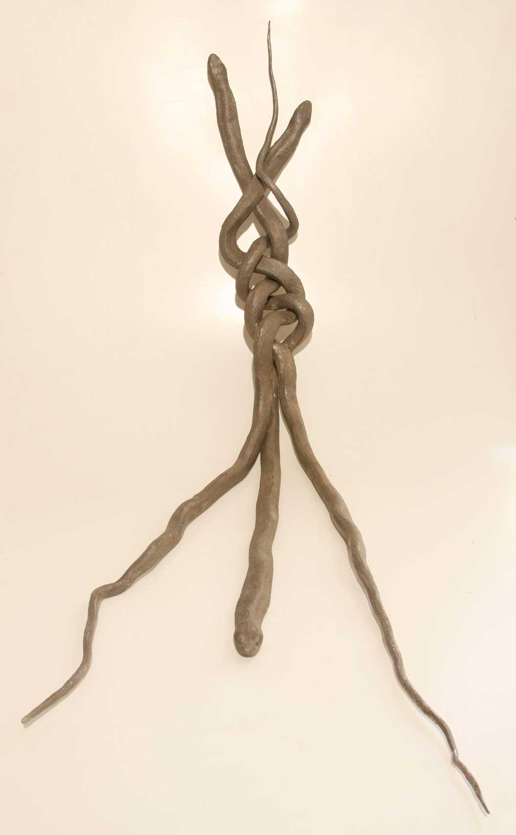 Braid of Snake