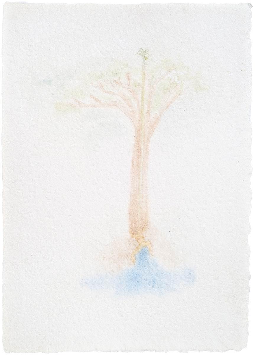Watercolor – Quase Aurora