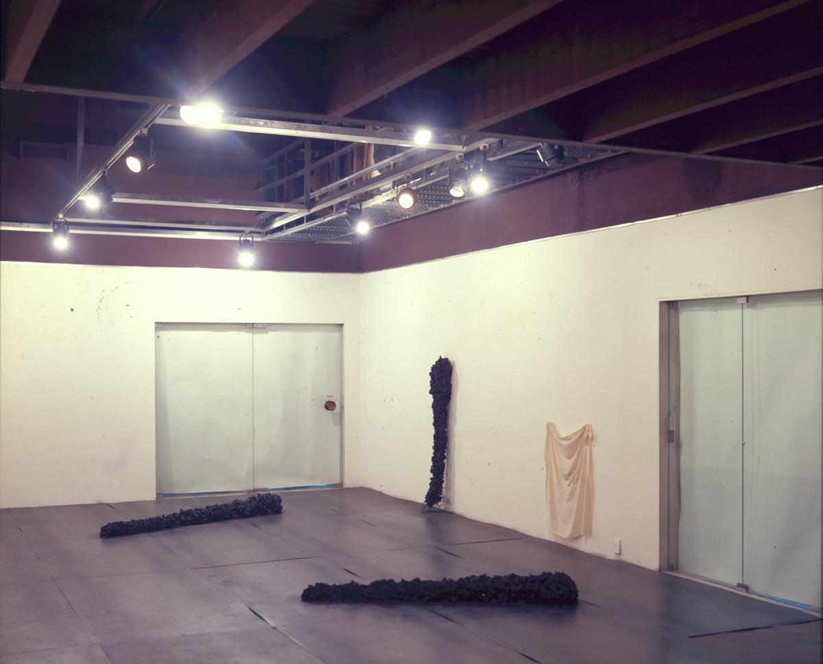 Galeria Saramenha