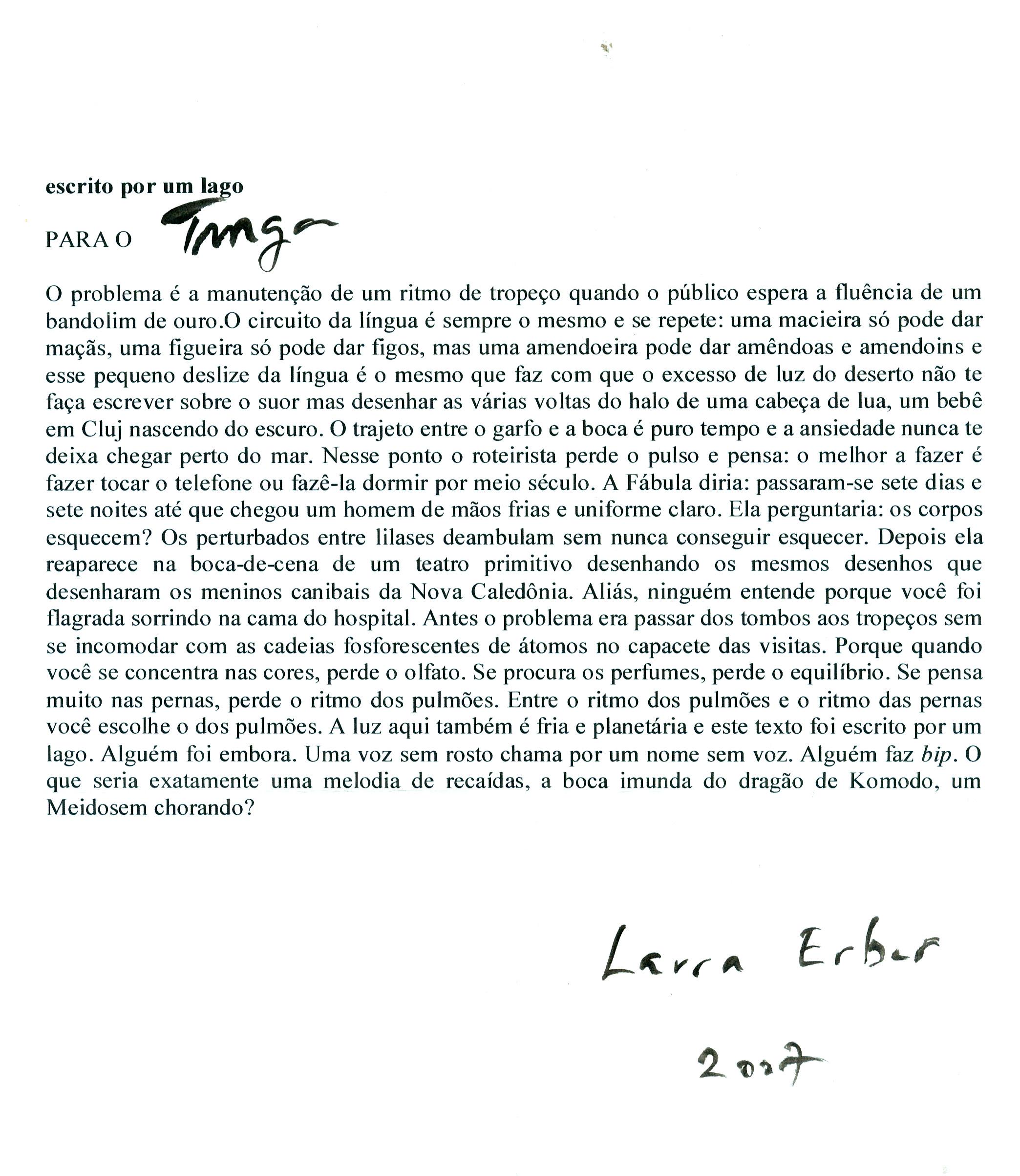 Escrito por um Lago (carta p/ Tunga, de Laura Erber)